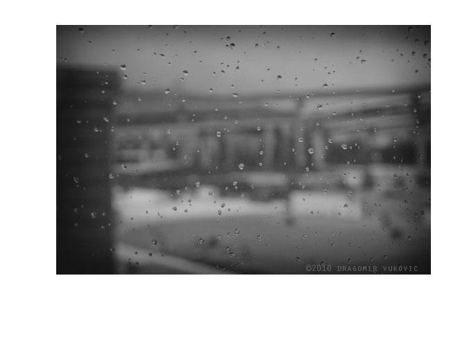 Winter Rain 2