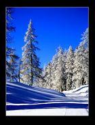 Winter shades...
