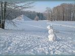Winter-Single