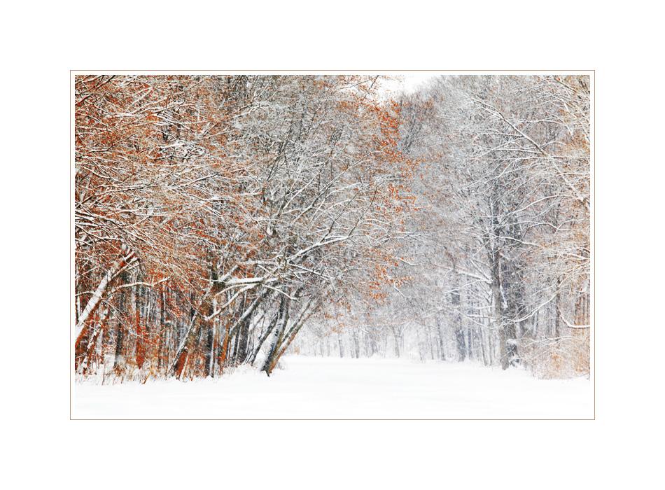 Winter, so wie ich ihn mag ...