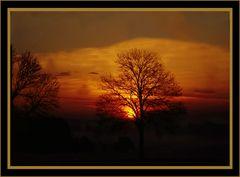 Winter Sonnen  Aufgang  Sachsenried