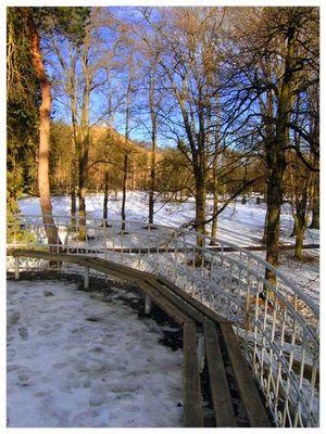 Winter - spring