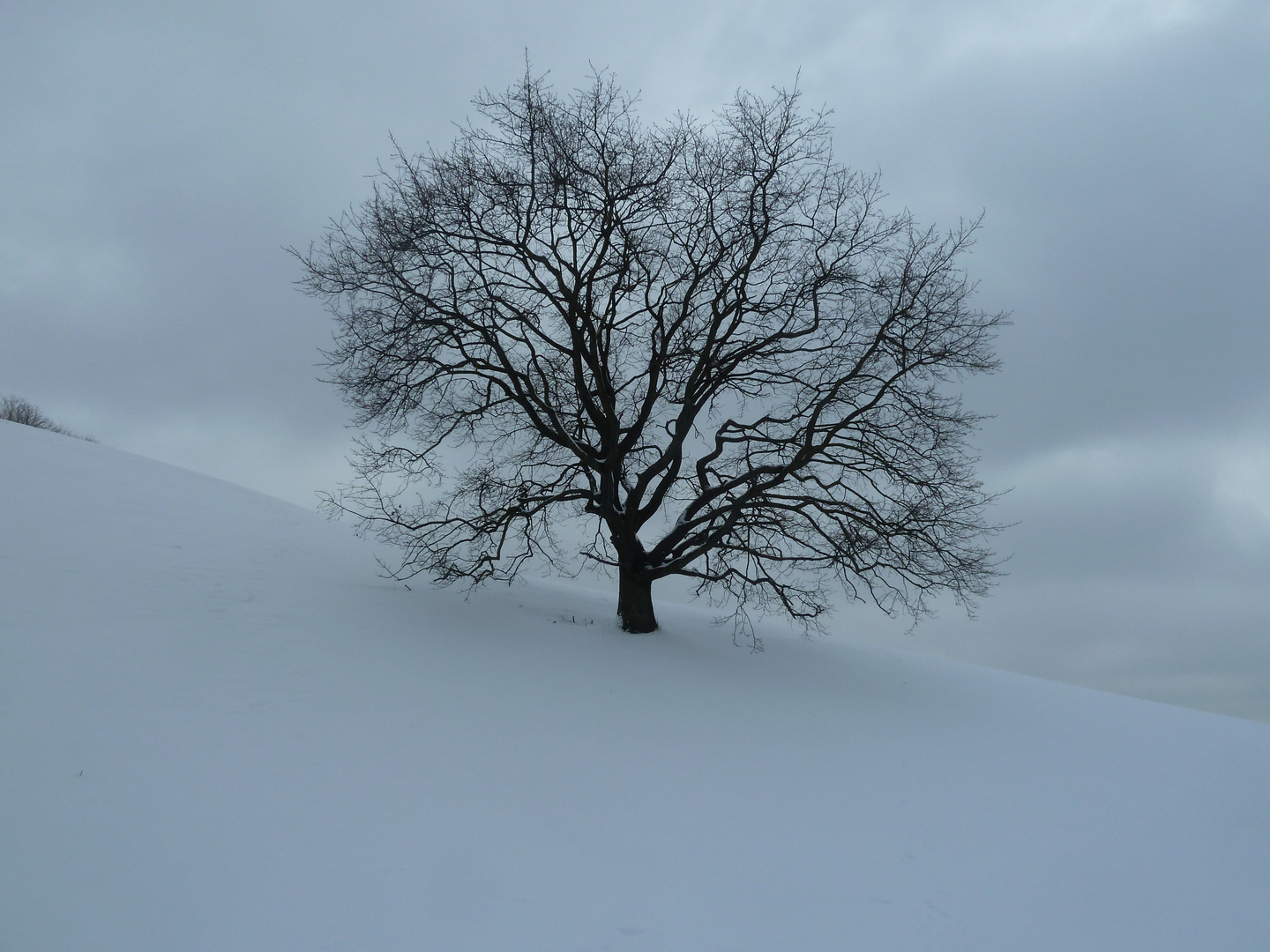 Winter Stille