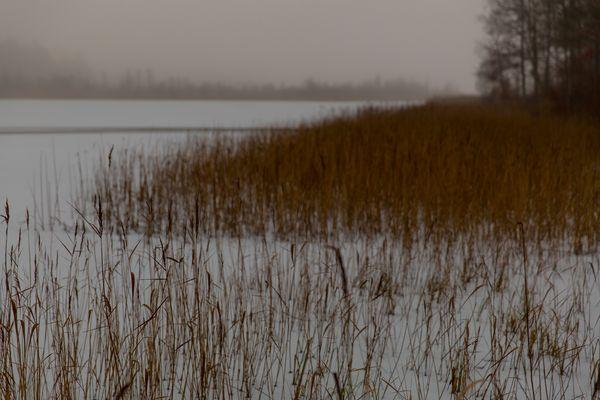 Winter-Strand