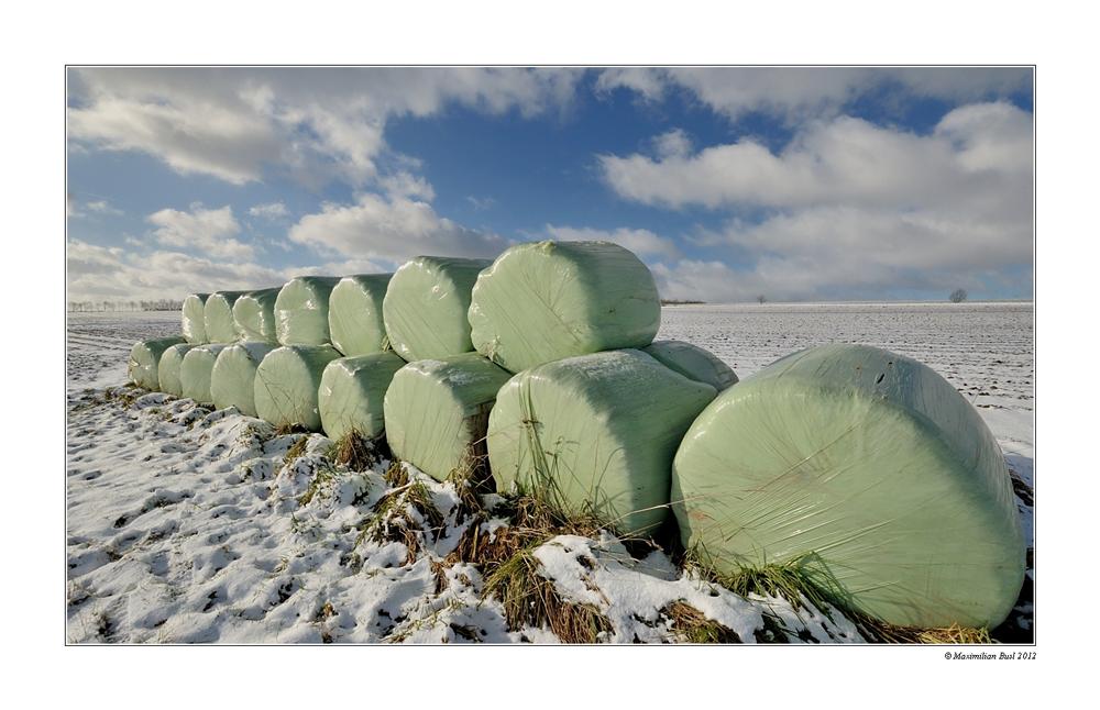 Winter-Stroh