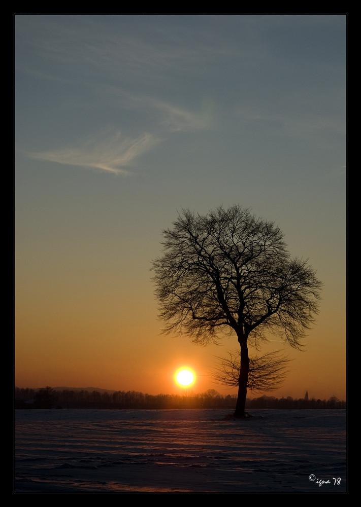 Winter Sunlight!