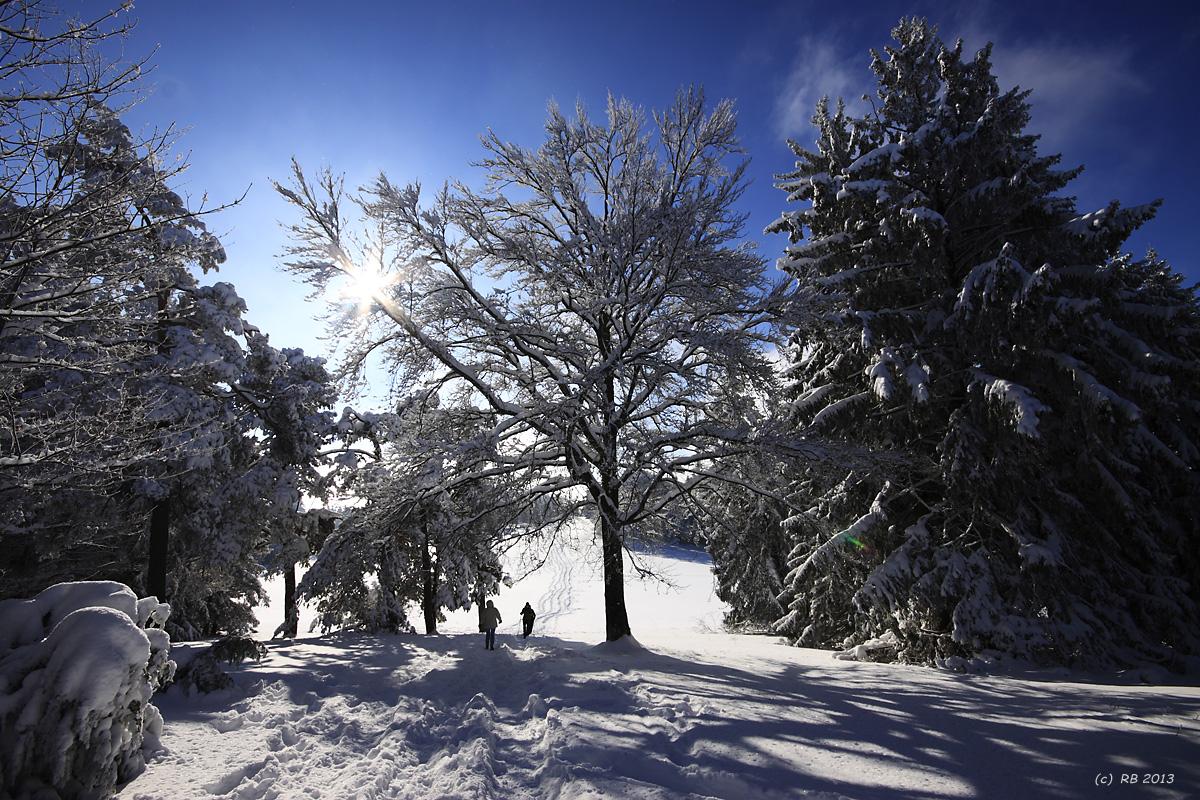 Winter-Symphonie
