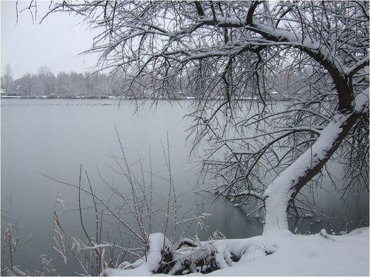 Winter Tag in meinem Heimat