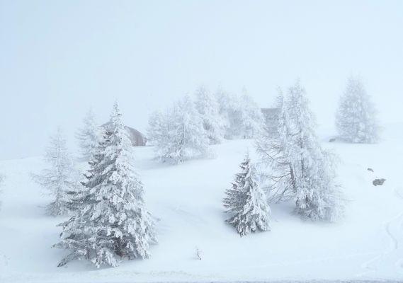 Winter-(Traum)