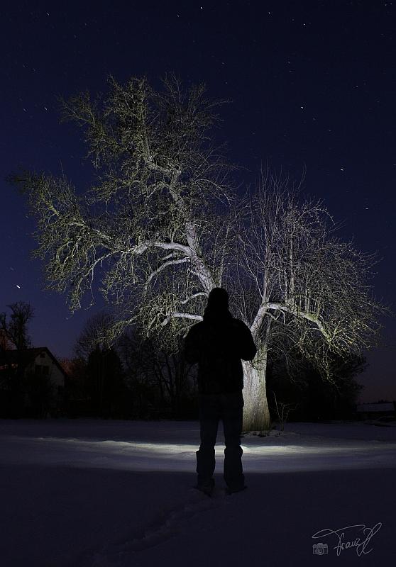 Winter u Licht...