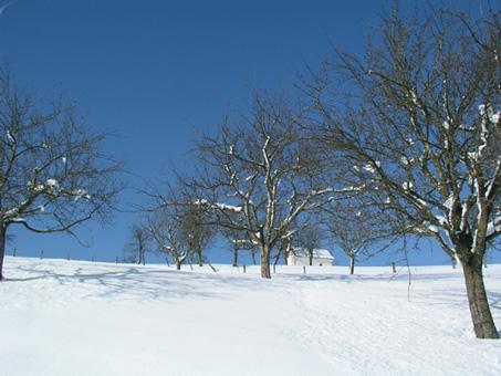 Winter über dem Steyrtal, Oberösterreich