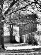 Winter Walk 3a
