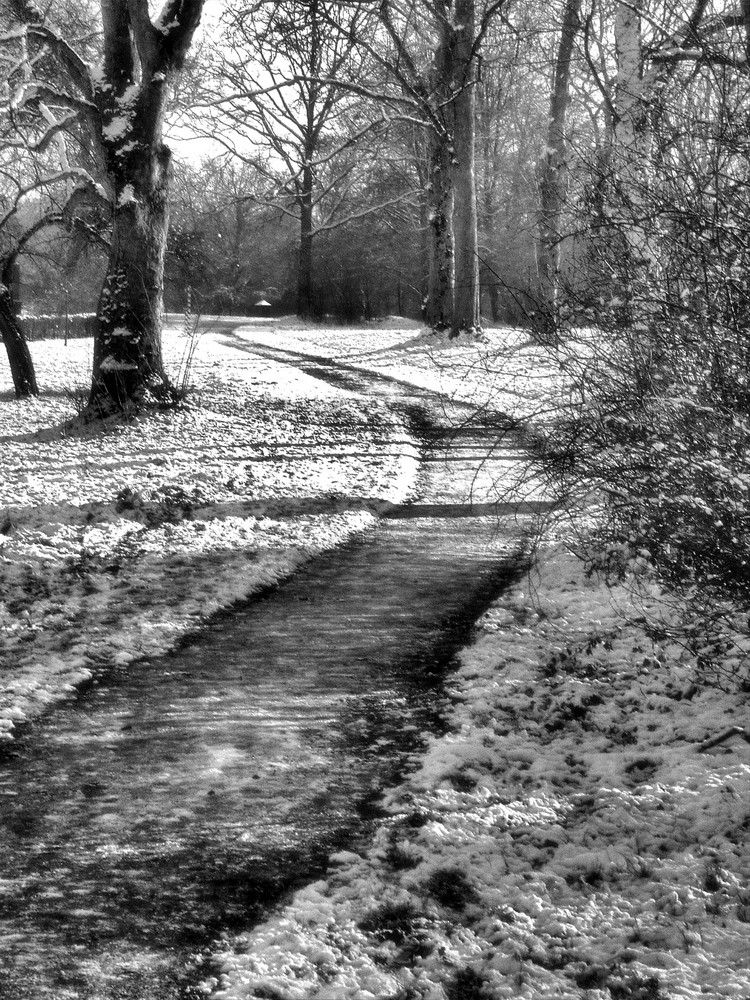 Winter Walk1b