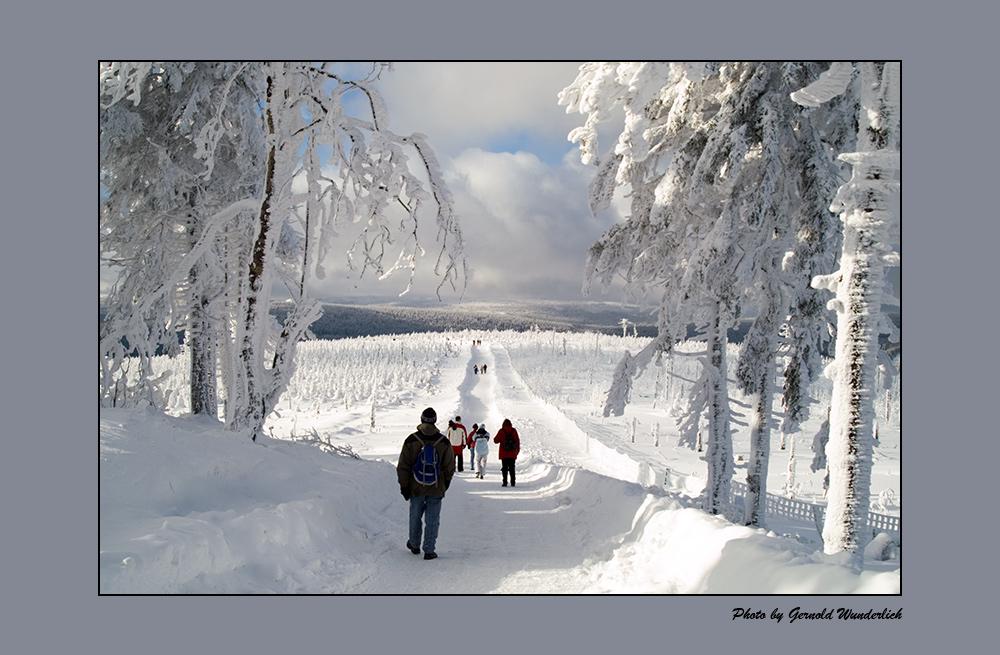 Winter-Wanderer