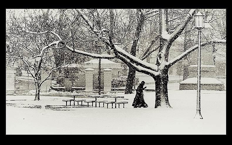 Winter, Washington, D.C.