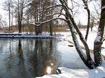 Winter-Wasser-Sonne