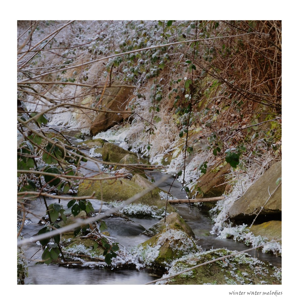 winter water melodies (3)