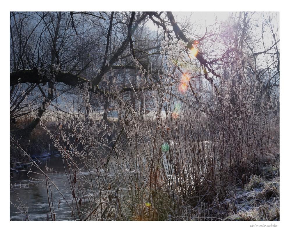 winter water melodies (7)
