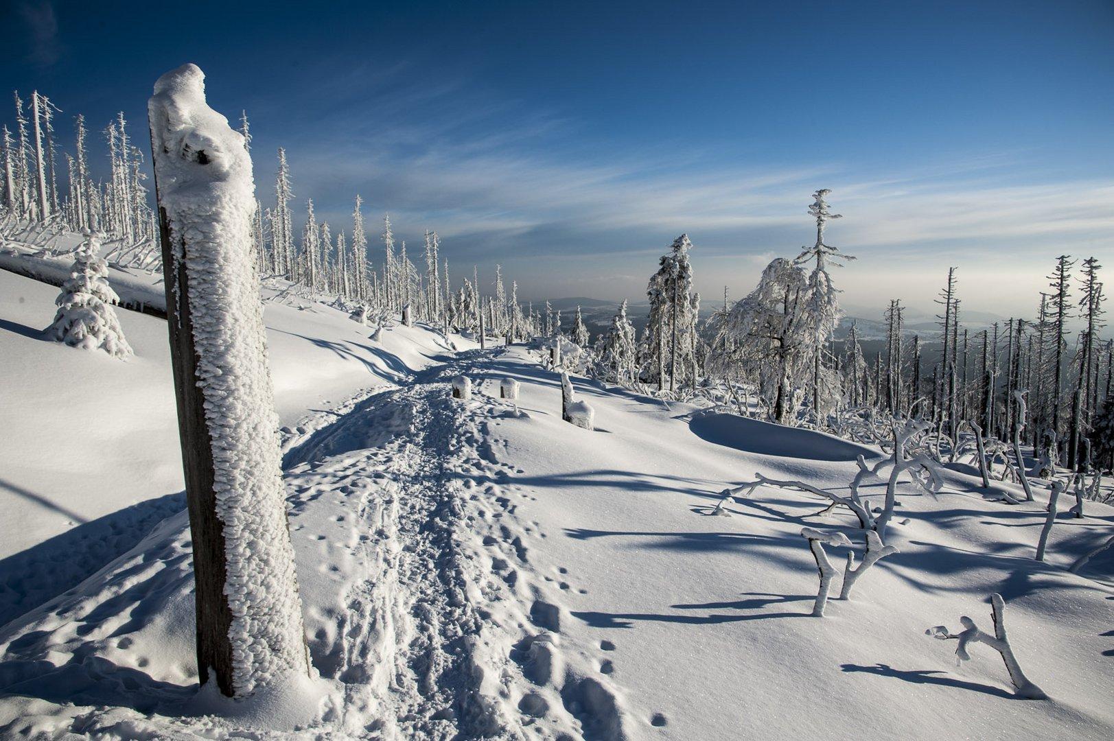 Winter-Wege - Lebens-Wege