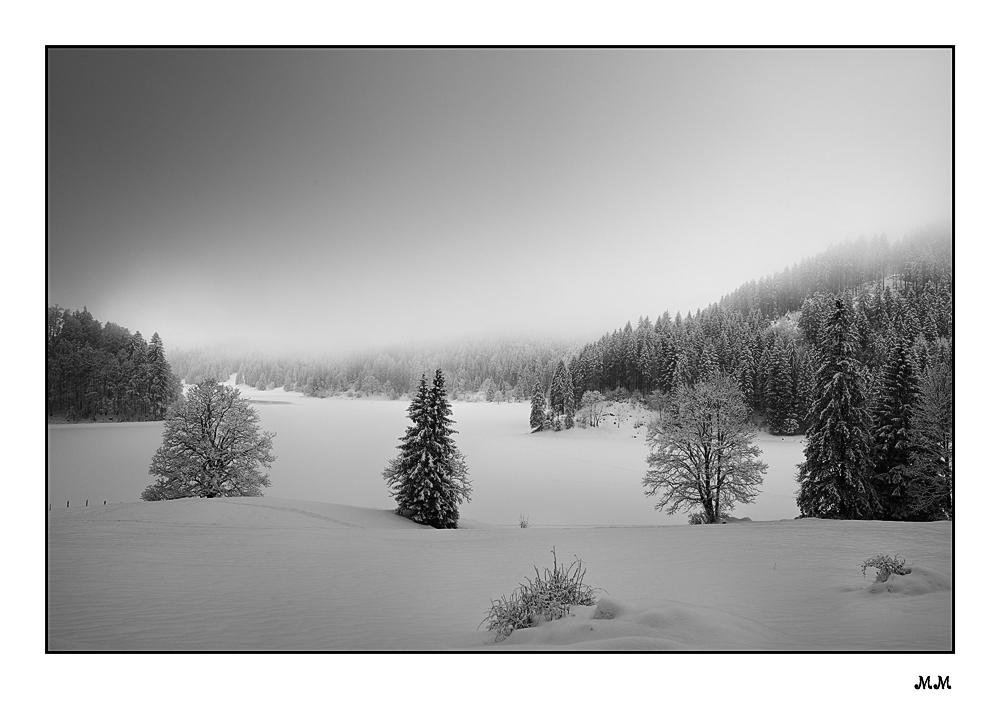 Winter-Wetter I