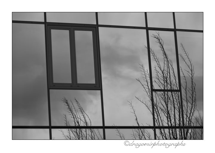 Winter Windows 2