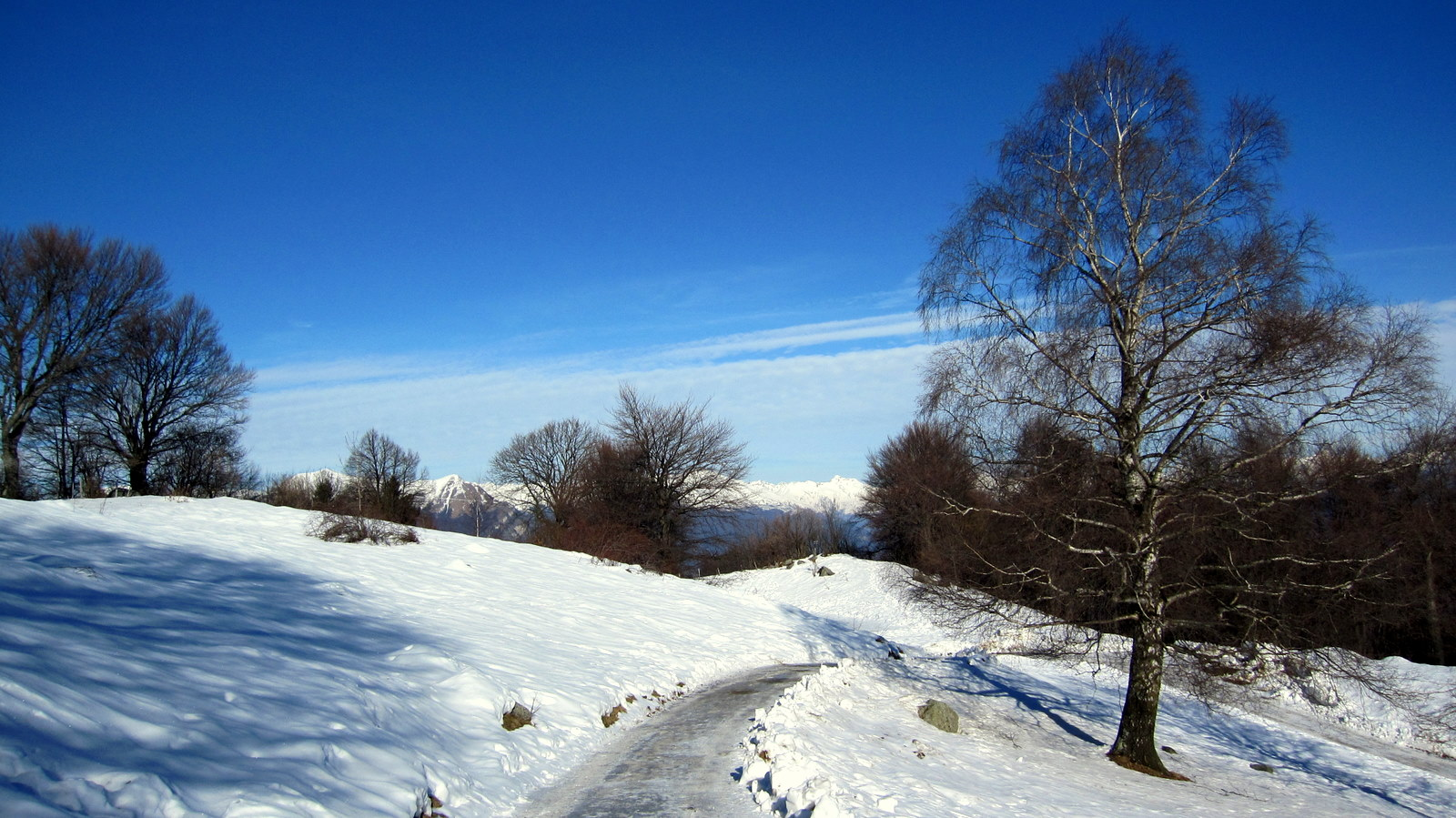 winter-wonder-world
