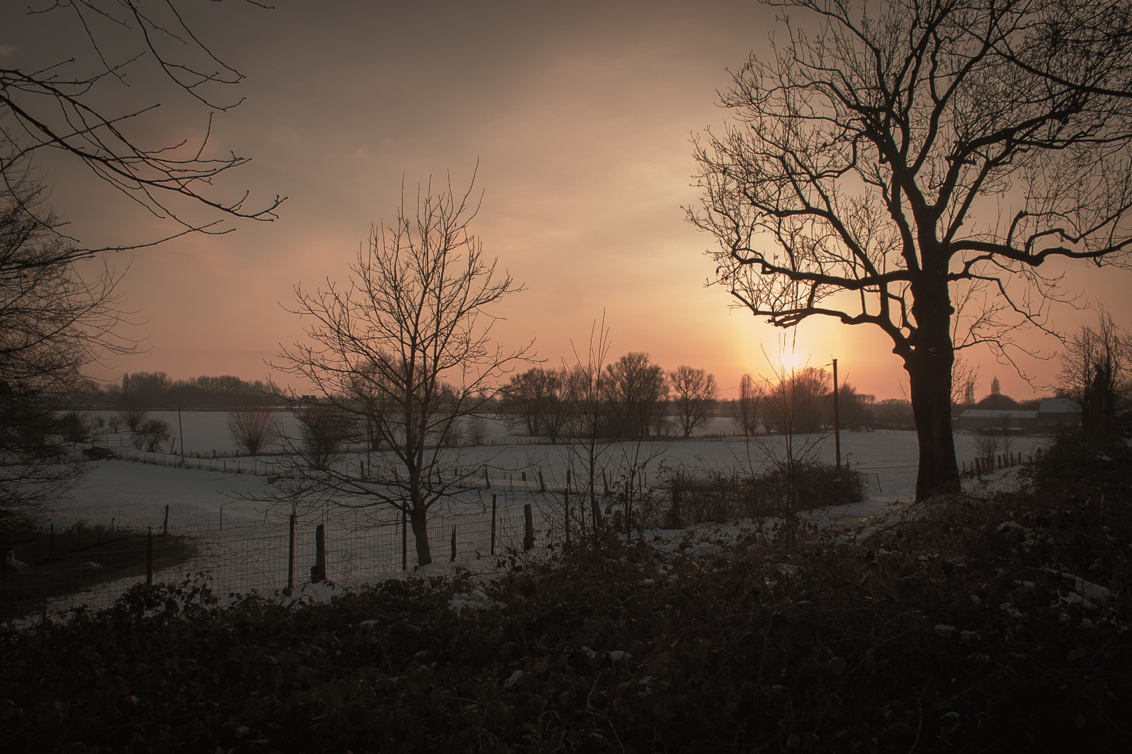Winter-Wonderland at sunset