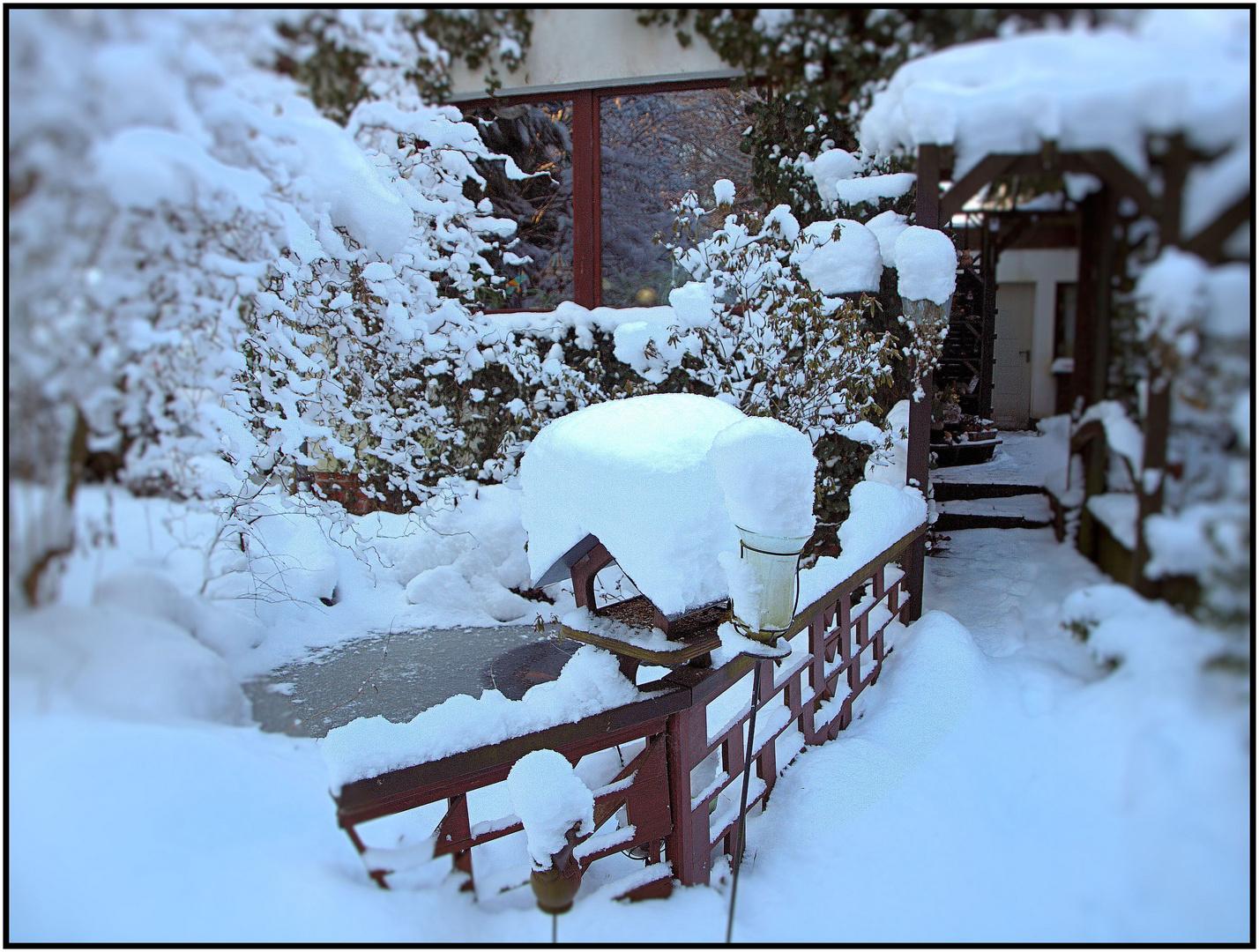 Winter-Wunder-Welt