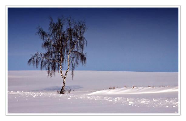 Winter X
