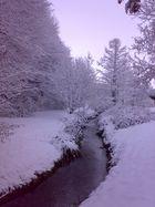 Winter-Zauber in Werl