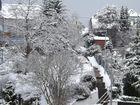 Winter zu Hause
