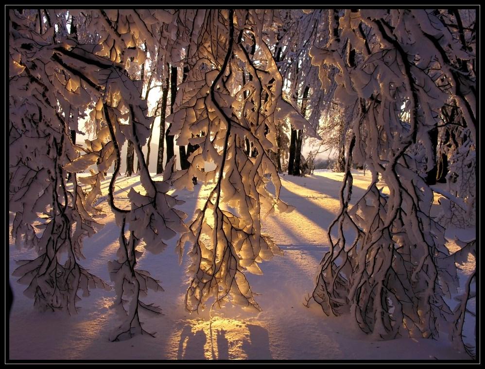 Winterabend 2