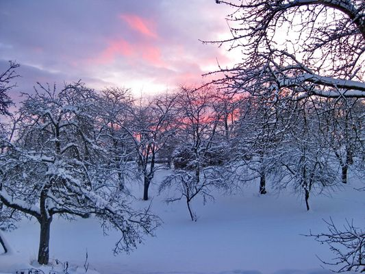 Winterabend 2011