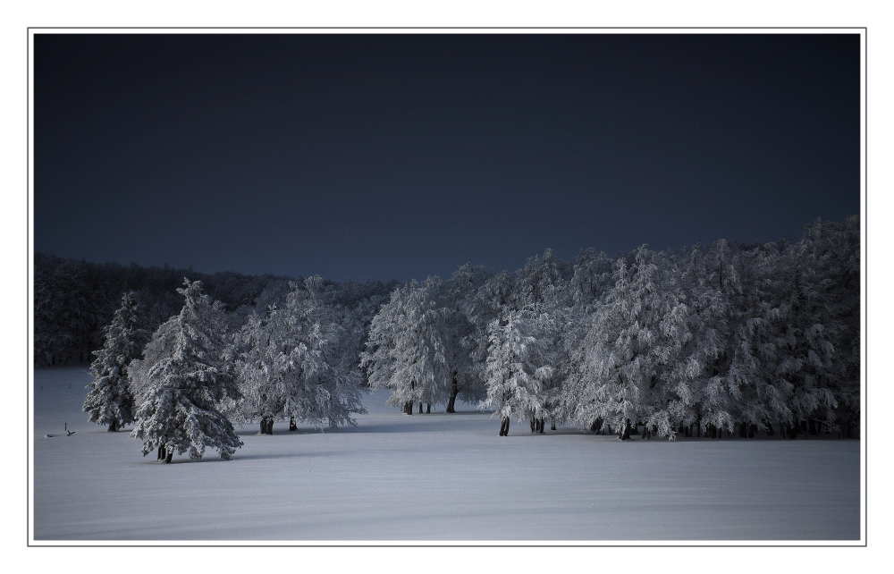Winterabend von Karin M. Herrling