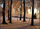 Winterabend 3