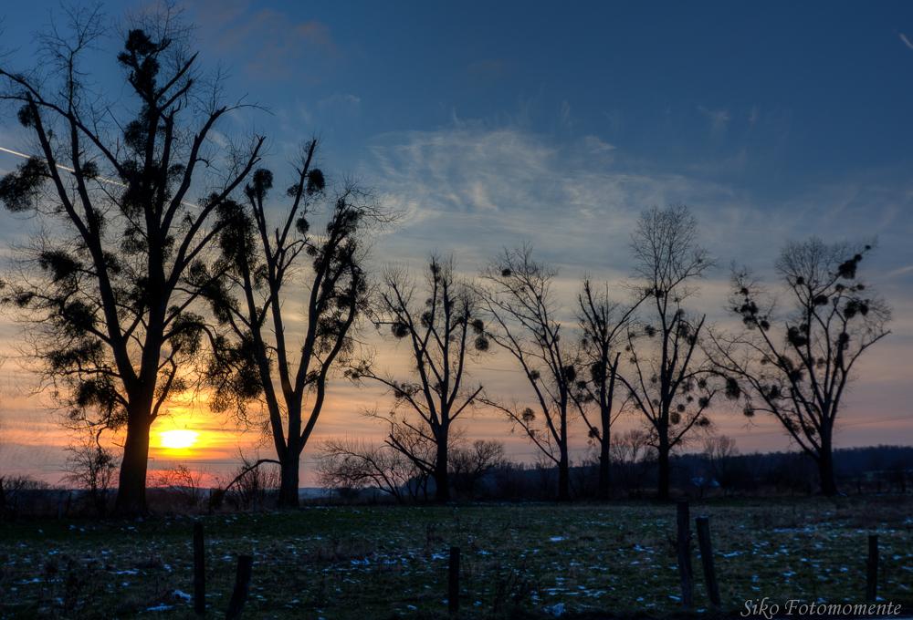 * Winterabend *