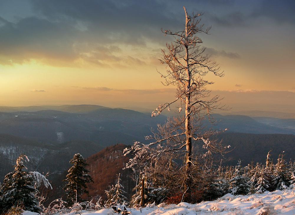 Winterabend am Inselsberg