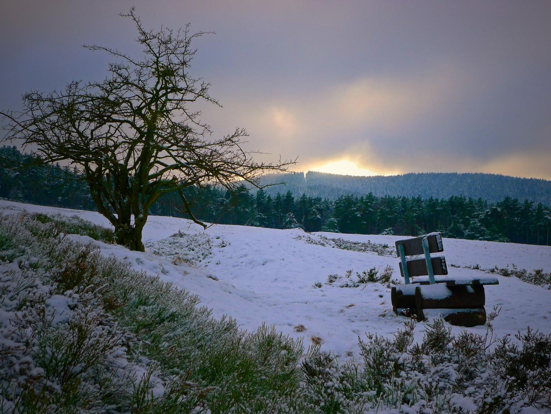 Winterabend auf Goslars Bergwiesen