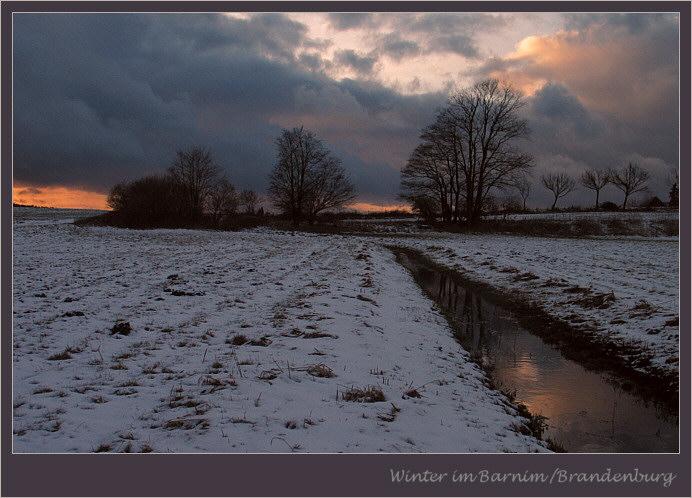 Winterabend im Barnim/Brandenburg 1