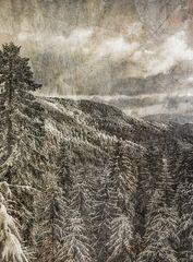 Winterabend in der Wernest II