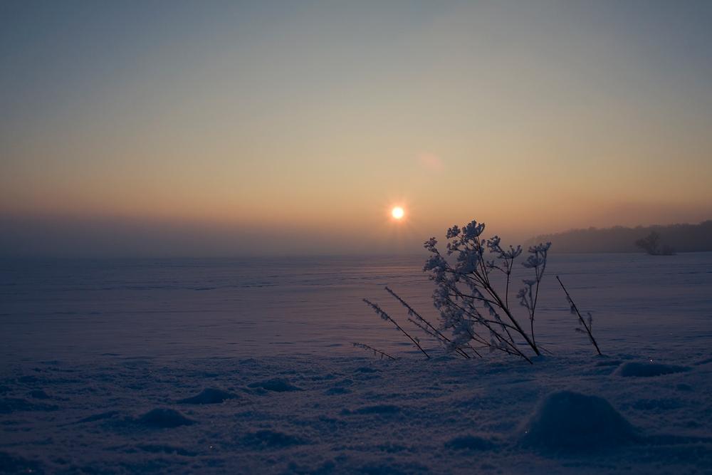 Winterabend über dem Feld