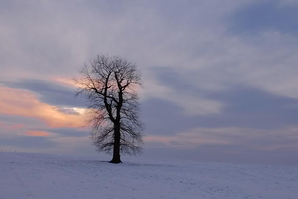 Winterabende...