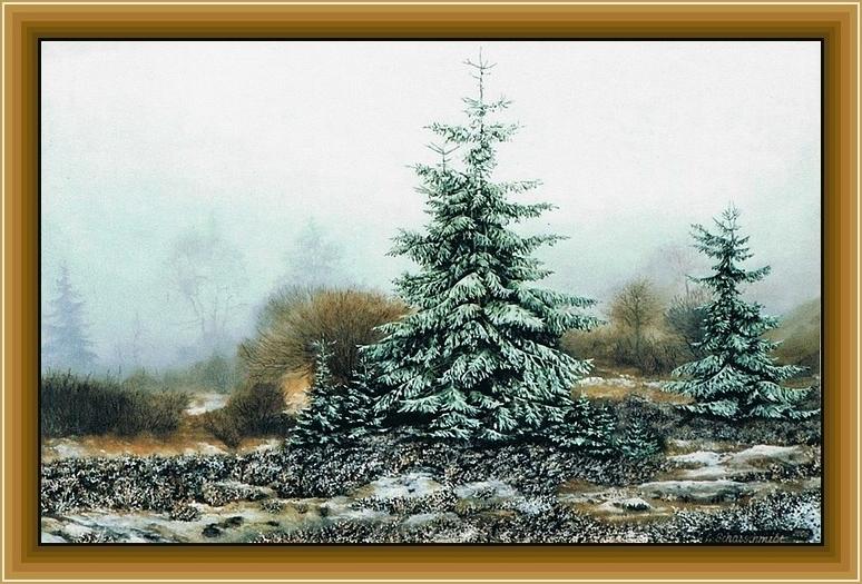 Winteranfang im Hochmoor (2008)