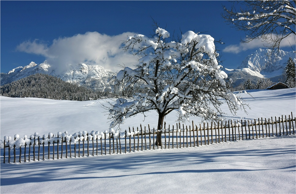 - Winterankunft II -