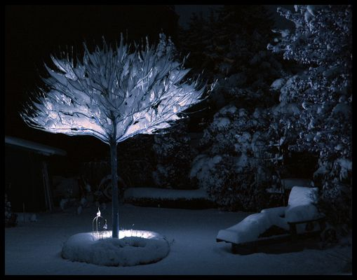 ...winterbaum...