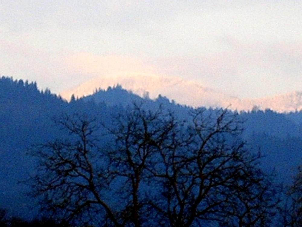Winterbelchen im Südschwarzwald