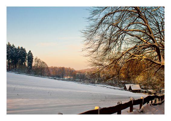Winterbild