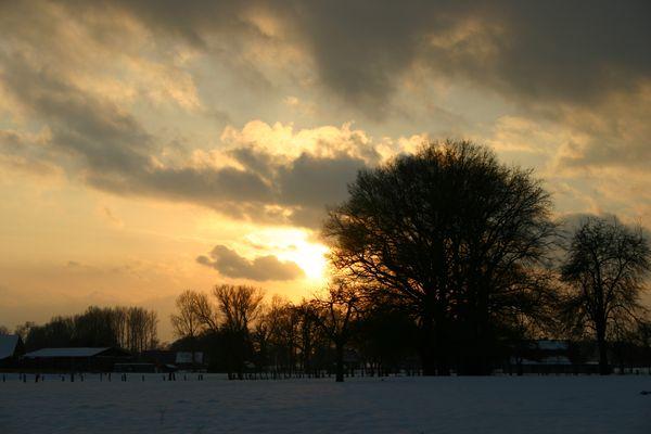 Winterbilder 1