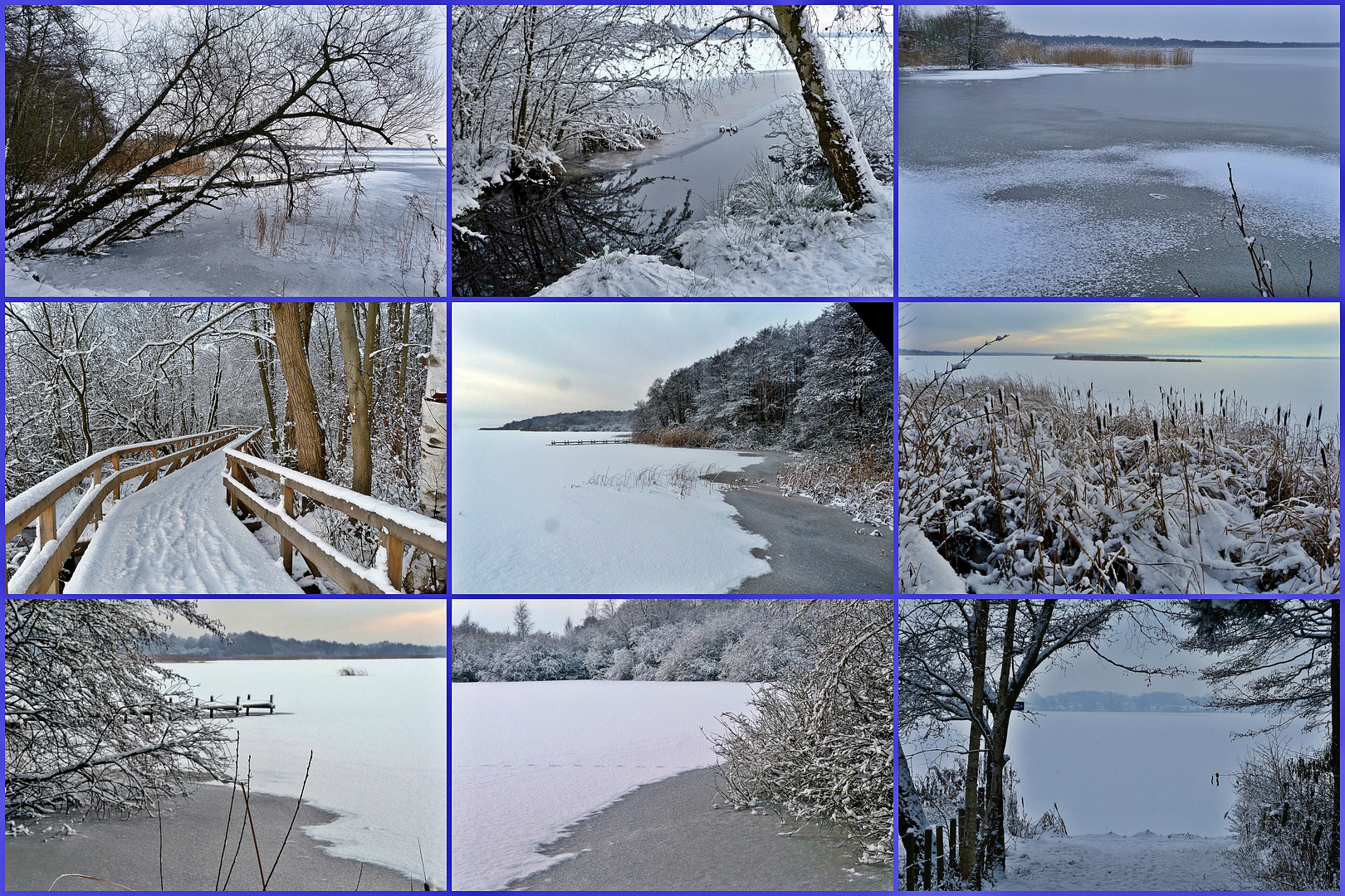 Winterbilder  vom Steinhuder Meer!      (2013)
