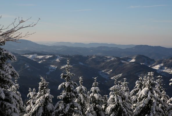 ...Winterblick...